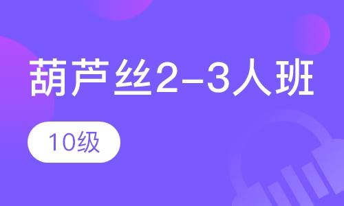 葫蘆絲2-3人班 10級