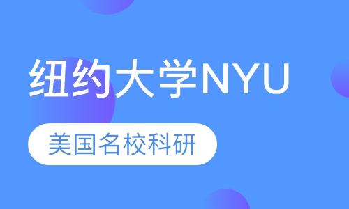 纽约大学NYU