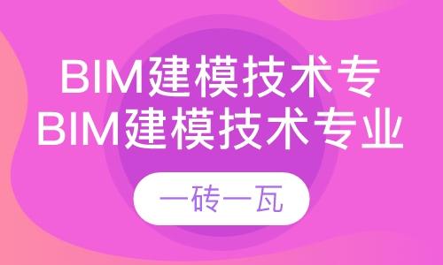bim建模技术专业技能考试