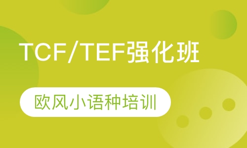 TCF/TEF强化班