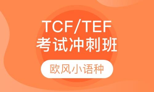 TCF/TEF考试冲刺班