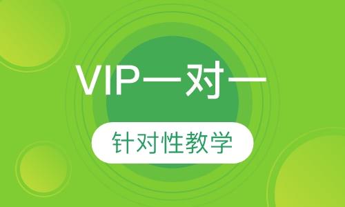 文化課VIP一對一