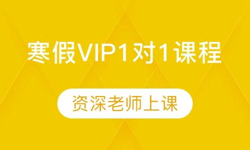 寒假VIP1对1课程