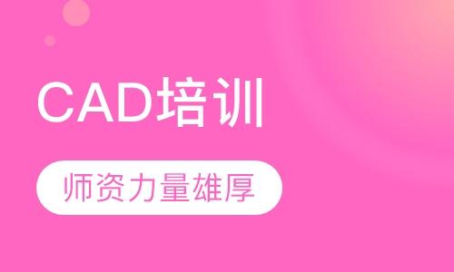 CAD设计/AutoCAD软件