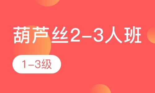 葫蘆絲2-3人班  1-3級