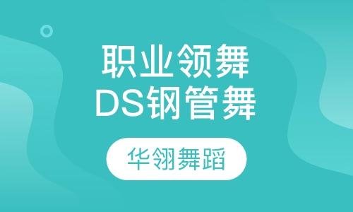 职业领舞DS 初级钢管舞入门班