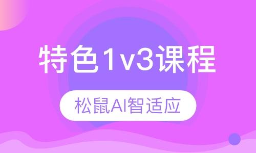 智適應小學(初中)特色1v3課程