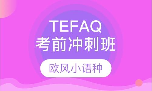 TEFAQ考前冲刺班