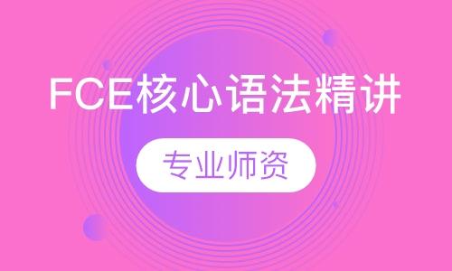 FCE核心語法精講
