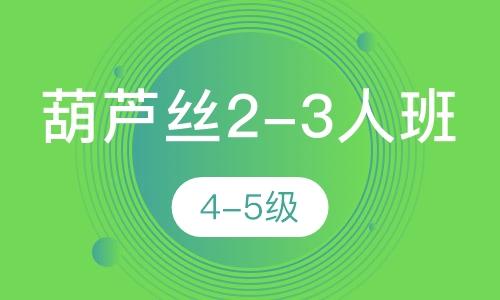 葫蘆絲2-3人班  4-5級