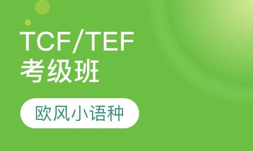 法语TCF-TEF保分班