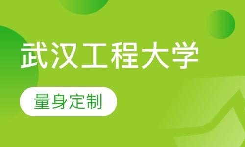 武汉工程大学(在职研究生)