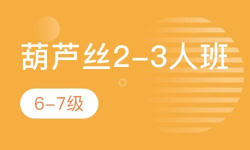 葫蘆絲2-3人班  6-7級