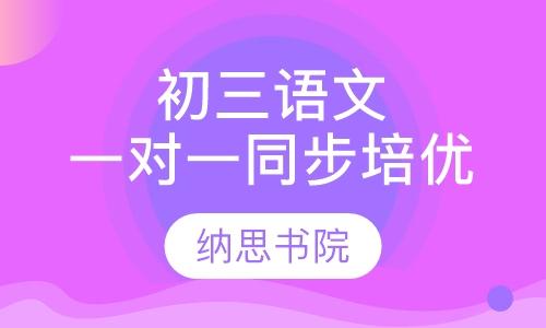 初三语文一对一同步培优课程
