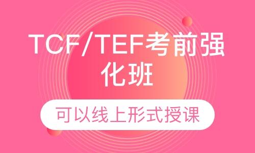 法語TCF/TEF考前強化班